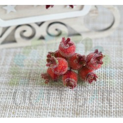 Big Red Berries - snowy rowanberry