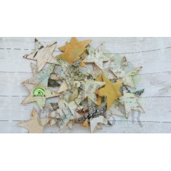Birch Bark Star