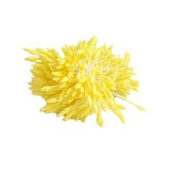 Glitter Stamens 2.50/7mm-YELLOW
