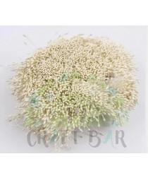 Pearl Stamens 1 mm / 002