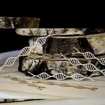 Chipboard - DNA