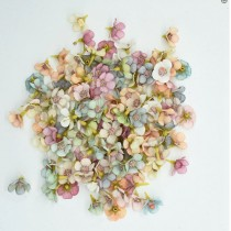 Mini Flowers Daisy -...