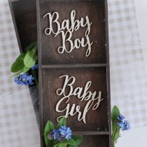 Chipboard - Baby Inscriptions