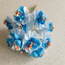 Apple Flowers - BLUE with...