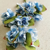 Peach Flowers - BLUE