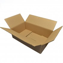 Shipping flap carton for DL...