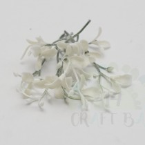 Leaf - Flowers 093