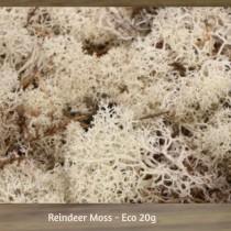 Reindeer Moss - Eco