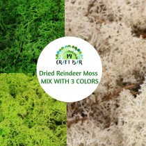 Dried Reindeer Moss - MIX...