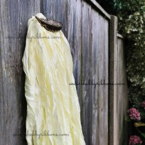 Shabby Ribbon 077 - pale lemon