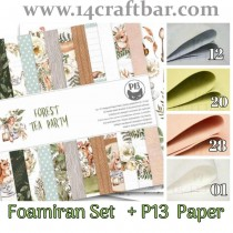 Foamiran Set with P13 Paper...