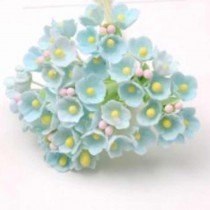 Small Flowers - MINT WITH...