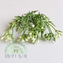 Leaf - Berries 116