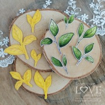 Rubber Stamp - Set of Leaves