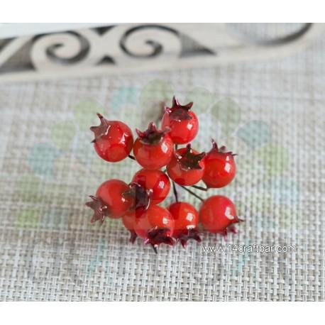 Red Berries - rowanberry