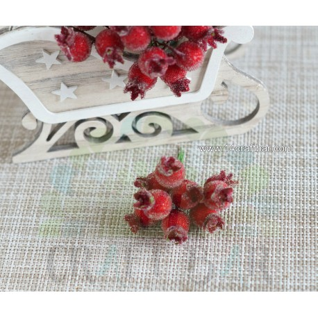 Big Red Berries - snowy rowanberry
