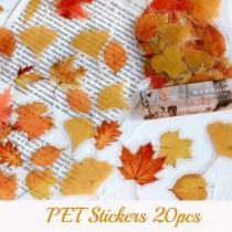 PET Stickers -  AUTUMN...