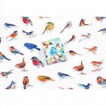 Mini Stickers - BIRDS - 46pcs