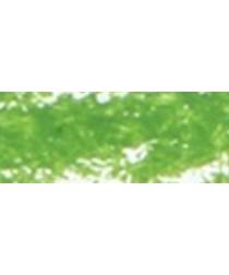 Oil Pastel 22