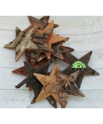 Birch Bark Star - dark