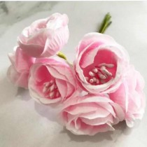 Peony Flowers with stamens...