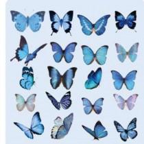 PET Stickers - BLUE...
