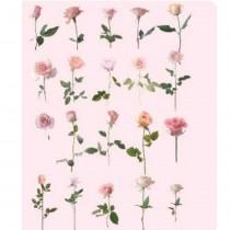 PET Stickers - ROSES 20pcs