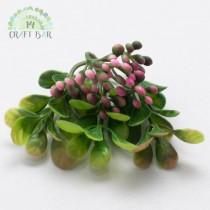 Leaf - Berries 099