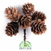 Natural Pine Cones on Wire...