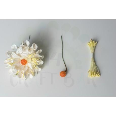 Daisy Flower Stamens Round