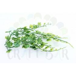 Leaf 019