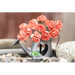 Small Rose /CORAL