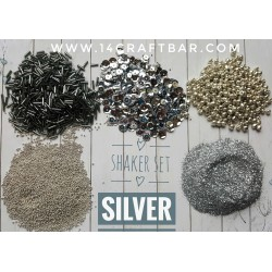 Shaker Set / SILVER
