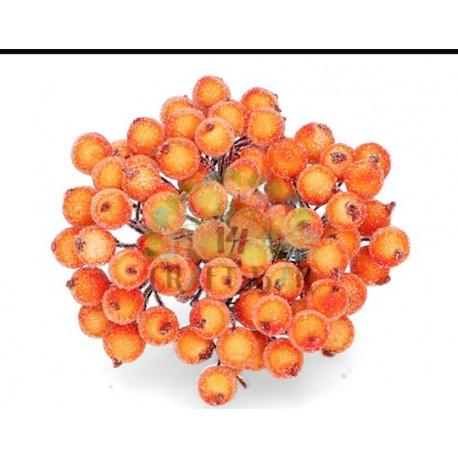Red Berries - twig