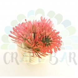 "Mini Stamen ""bush"" - CORAL CLOVER"