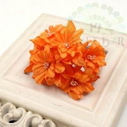 Silk Lily / ORANGE
