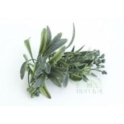 Leaf/ Twig 062