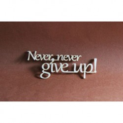 Chipboard- Never give up