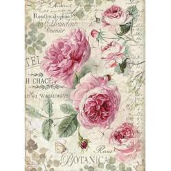 A4 Rice Paper - BOTANIC ENGLISH ROSES