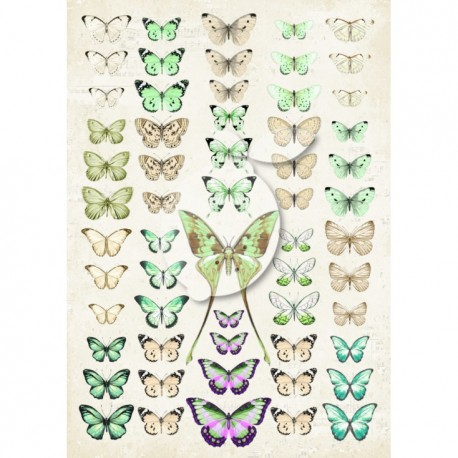 Scrapbooking Paper-  A4 Sheet   Butterflies 042