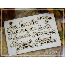 Chipboard- Set of French inscriptions