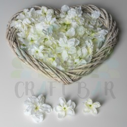 Silk Gillyflower - WHITE