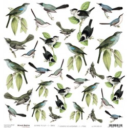 Scrapbooking Paper- 12x12  SHEET OF EXTRAS TO CUT/ Birds